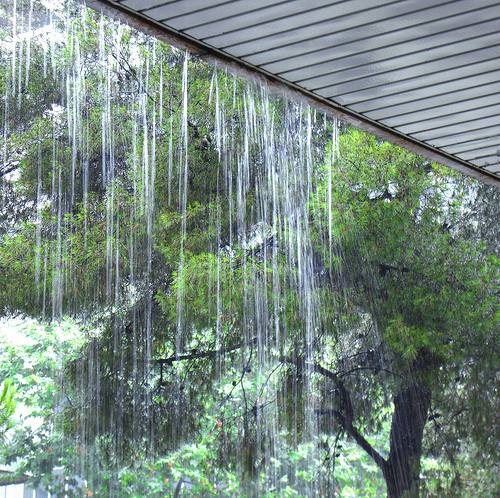 Rain on porch