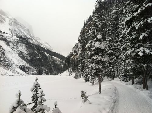 Lake Louise trail to glacier